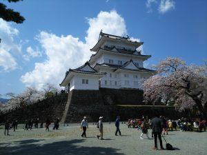 小田原城桜2