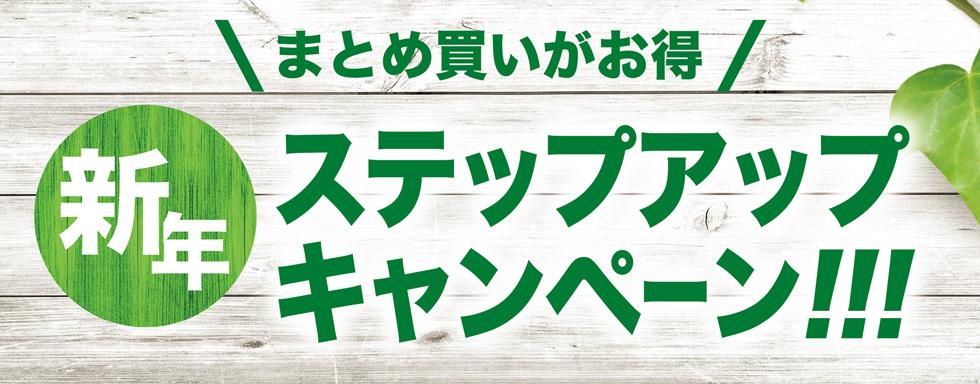 まとめ買いがお得新年ステップアップキャンペーン!!!